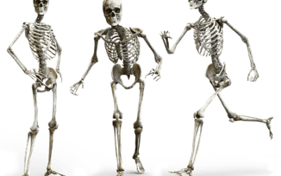 Osteoporosis – An Introduction